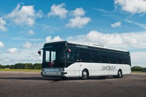 mergvakario-stirptizas-mikroautobuse-limobus